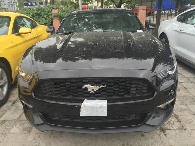 16款福特野马最新报价天津报税进口汽车高清图片